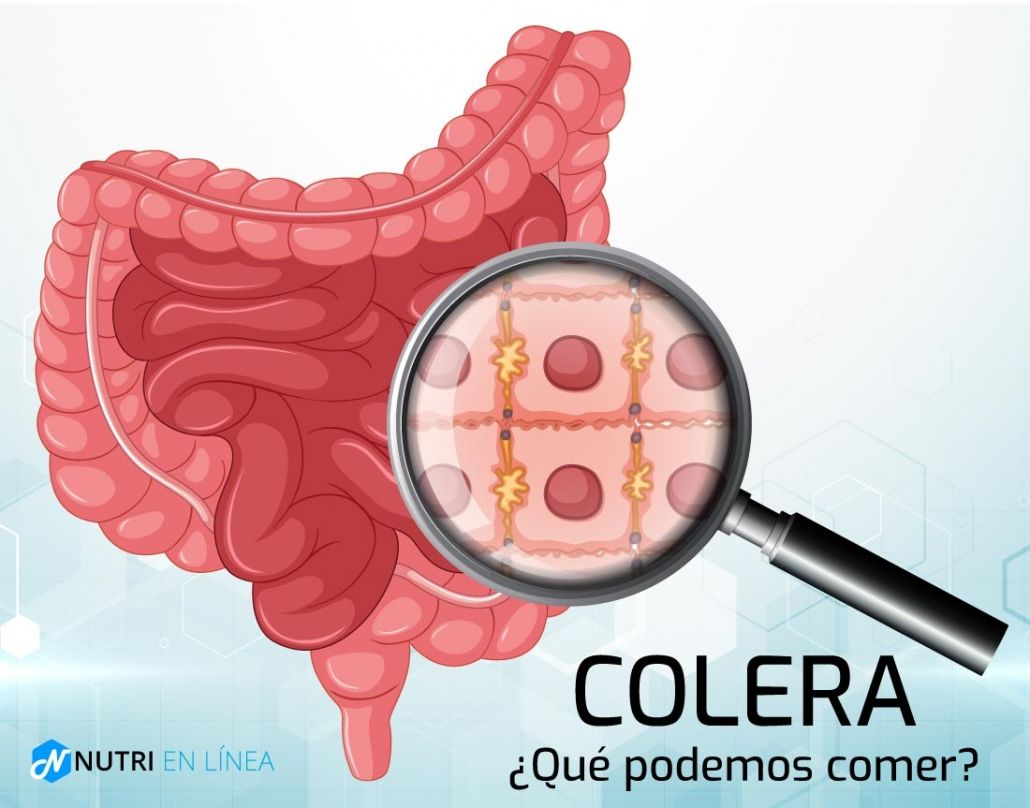 colera en el intestino